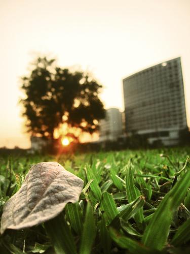 İmaj: Flickr.com/photos/sumansaurabh